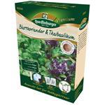 Quedlinburger Premium Anzuchtset Blattkoriander & Thaibasilikum