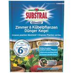 Substral Osmocote Zimmer- & Kübelpflanzendünger Kegel 25 Stück