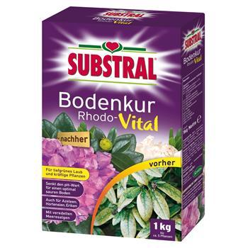 Substral Rhodo-Vital 1 kg