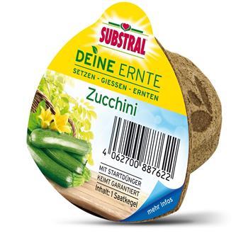 """Substral """"Deine Ernte"""" Saatkegel Zucchini"""