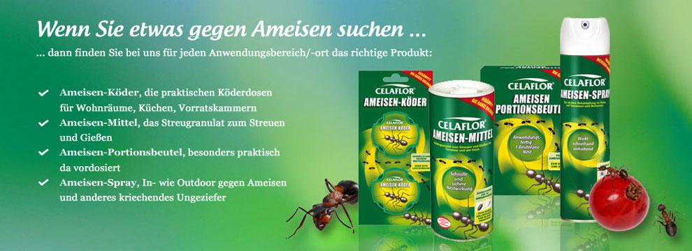 Celaflor Ameisenmittel